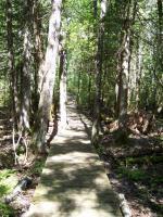 Cheboygan State Park Trail