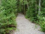 Harrisville State Park-Cedar Run Nature Trail