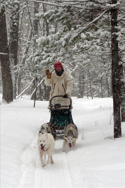 Dog sledding at Ocqueoc Falls