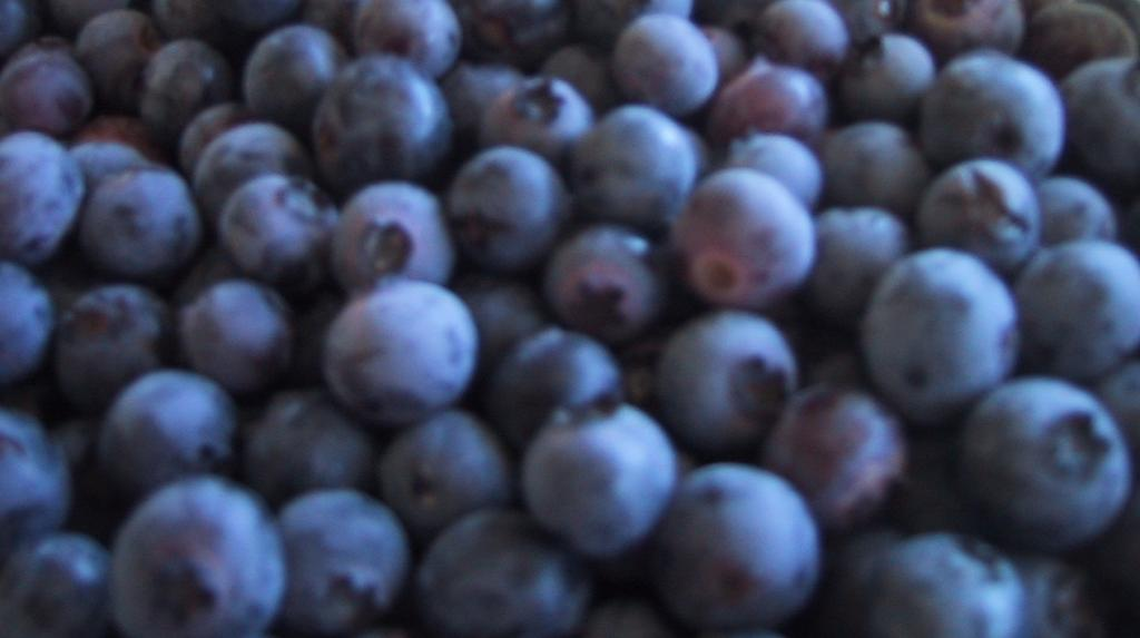 blue_berries.jpg