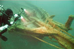 Diver investigates the bowsprit and cated anchors