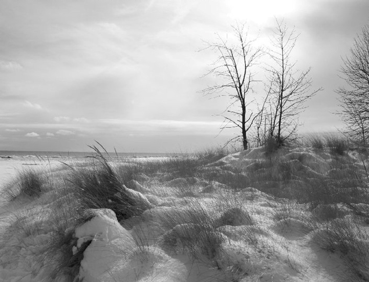 Tawas Point in Winter