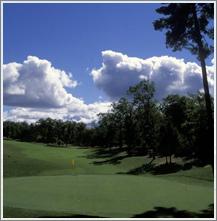 white_pines_golf.jpg